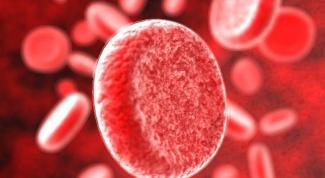 Как повысить уровень железа в крови