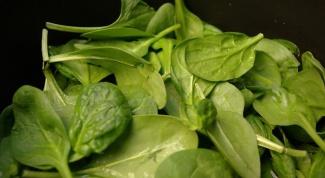 Как варить шпинат