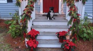 Как украсить вход в дом