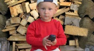 Как купить дрова в 2017 году