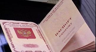 Что нужно делать при потере паспорта