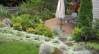 Как спроектировать сад