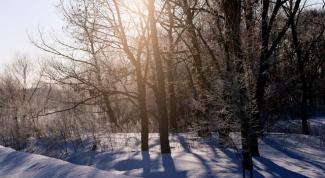 Как нарисовать картину с зимой