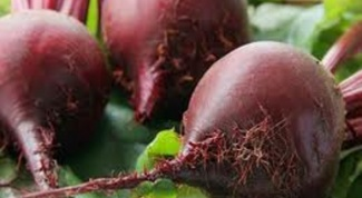 How to cook red beets