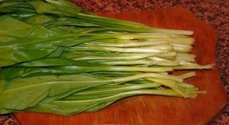 Как приготовить зеленый чеснок - черемшу
