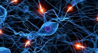 Как определить нервное заболевание