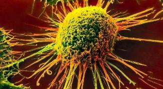 Что такое раковая клетка