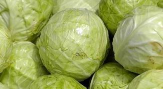 Как приготовить блюда из капусты на праздник