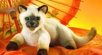 Как сшить игрушку-кота