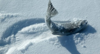 Как ставить сети под лёд?