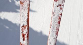 Как подобрать палки к лыжам