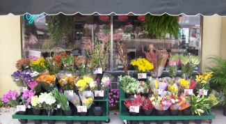 How to open a flower shop