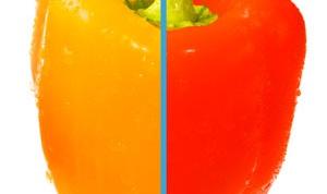 Как изменить цвет в фотошопе