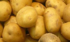 Как хранить картофель в 2017 году