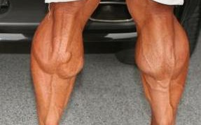 How to build calves feet