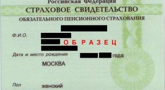 Как узнать номер своего пенсионного свидетельства