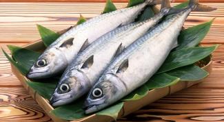 Как сохранить рыбу