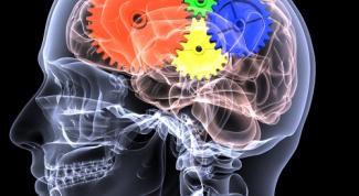 Как использовать весь мозг