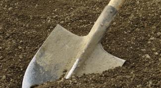 Как определить почву