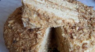 Как приготовить медовый торт