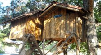 Как построить домик на дереве