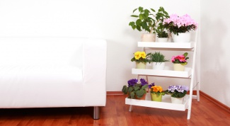 How to make a shelf for flowers