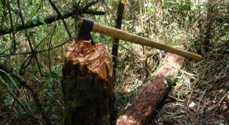 Как рубить дрова в 2018 году