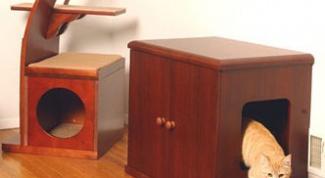 Как сделать самому домик для кота