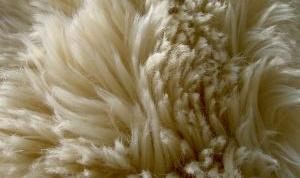 Как почистить белый мех в домашних условиях