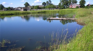 How to make a pond for fish farming