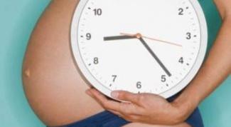 Как определить время для беременности