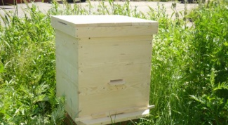 How to build a beehive for bees
