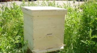 Как построить улей для пчел