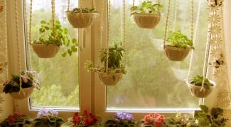 Как вывести из цветов мошек