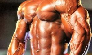 Как накачать боковые мышцы