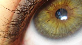 Как подчеркнуть зеленые глаза