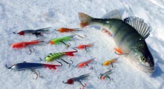 Как поймать рыбу зимой
