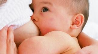 Как увеличить количество молока у кормящей матери