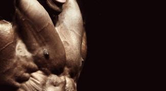 Как развить силу в мышцах