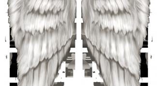 Как сделать крылья на фото