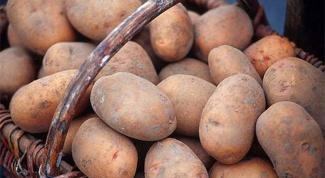 Как сохранить картошку