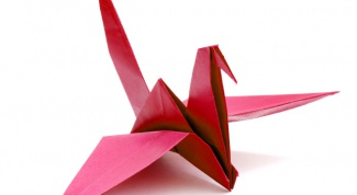 How to make bird origami
