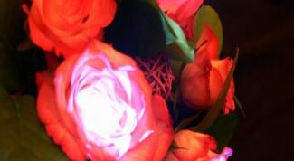 Как сделать светящиеся цветы