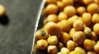 Как заварить горчицу