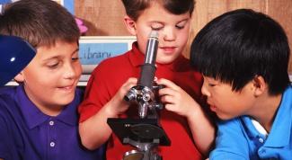 Как выбрать микроскоп