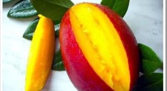 Как выбрать спелое манго