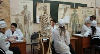 How to pass anatomy