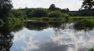 Как арендовать пруд
