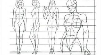 Как рисовать пропорцию человека
