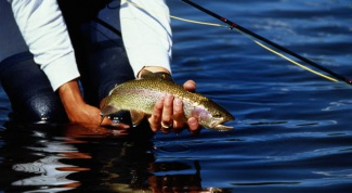 Как удержать рыбу